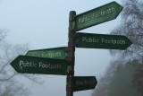 Signs In The Mist