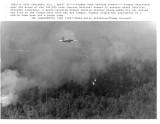 042585 forest fire.jpg