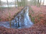 011 - Houdringe: open water in deze sloot vanwege stroming