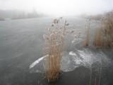 014 - Molenpolder: het lijkt mooi ijs maar dat valt toch in de praktijk toch wat tegen
