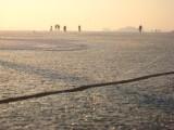 025 - Loosdrecht: mooi ijs kent ook scheuren