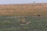 Zambia - 28 june 2010