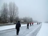 30 december 2010 - Weerribben, Steenwijkerland