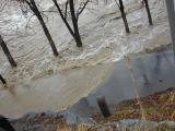 water laps paths