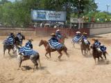 Escaramuza in action