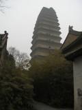 Small Wild Goose Pagoda 小雁塔