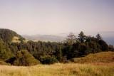 Marin County near San Francisco