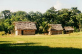 An Amazonian village near Rurrenabaque