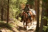 Ranger on horseback, Rocky Mountain NP