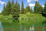 Coldwater Creek, Stillwater