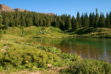 Cold creek, Routt National Forest