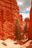 Navajo Loop at Bryce Canyon