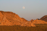 3602 Moonrise Joshua Tree NP.jpg