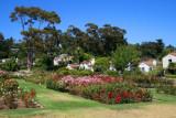 4105 Santa Barbara Rose Gardens.jpg