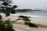 4306 Carmel Beach.jpg
