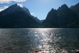 5293 Jenny Lake Reflections.jpg