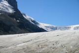 6291 Athabasca Glacier.jpg