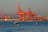 6947 Cranes in Vancouver.jpg