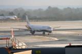 7884 Monarch from Malaga.jpg