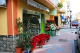 7994 San Luis florists.jpg