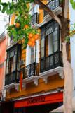 8045 Seville Oranges closeup.jpg