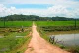 1885 Village road Vietnam.jpg