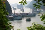 2179 Boats in Halong.jpg