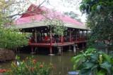 3372 Cafe Mekong Delta.jpg