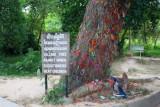 3759 Killing Tree Choeung Ek.jpg