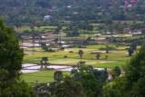 4376 Fields around Angkor.jpg