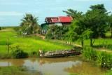 4460 Rural Houses farmland.jpg
