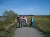 Birding at Lake Tisza