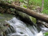 Mini Sauk Falls near Taum Sauk Mt.