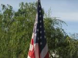 In Honor of Those Who Served..........