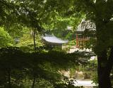 Secret Garden, Changdeok Palace