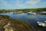 Damariscove Island 4