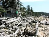 The Driftwood Shack