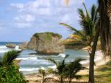 The Soup Bowls - Barbados