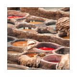 Fez, tanneries
