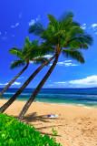 Kaanapali beach 2511
