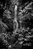 RD-629 wailua falls