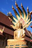Buddha with Nagas at Wat Chan