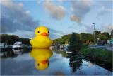Rubber Duck Lommel 2009