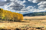 Gunnison National Forest