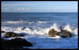 Ocean Of Motion