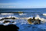 Wave Action Cambria, Ca