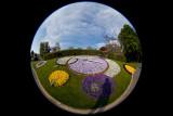 Geneva Flower Clock Fisheye