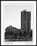 Waterfront Condo Tower