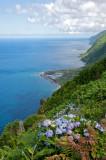 Açores 2008- Azores 2008