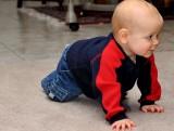 Crawl Down Perfectly